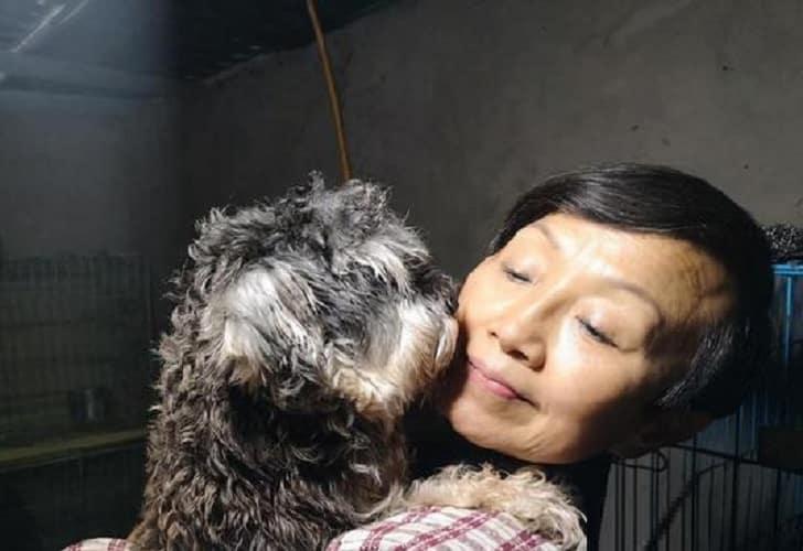 Chinesa divide casa com 1.300 cães, 100 gatos e quatro cavalos