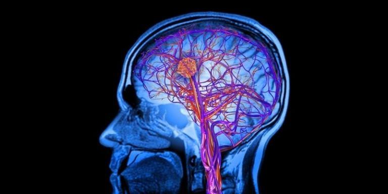Cientistas inventam microscópio que pode examinar o crânio humano