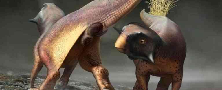 """Paleontólogos descobrem o primeiro ânus de dinossauro """"preservado"""" e """"único"""""""