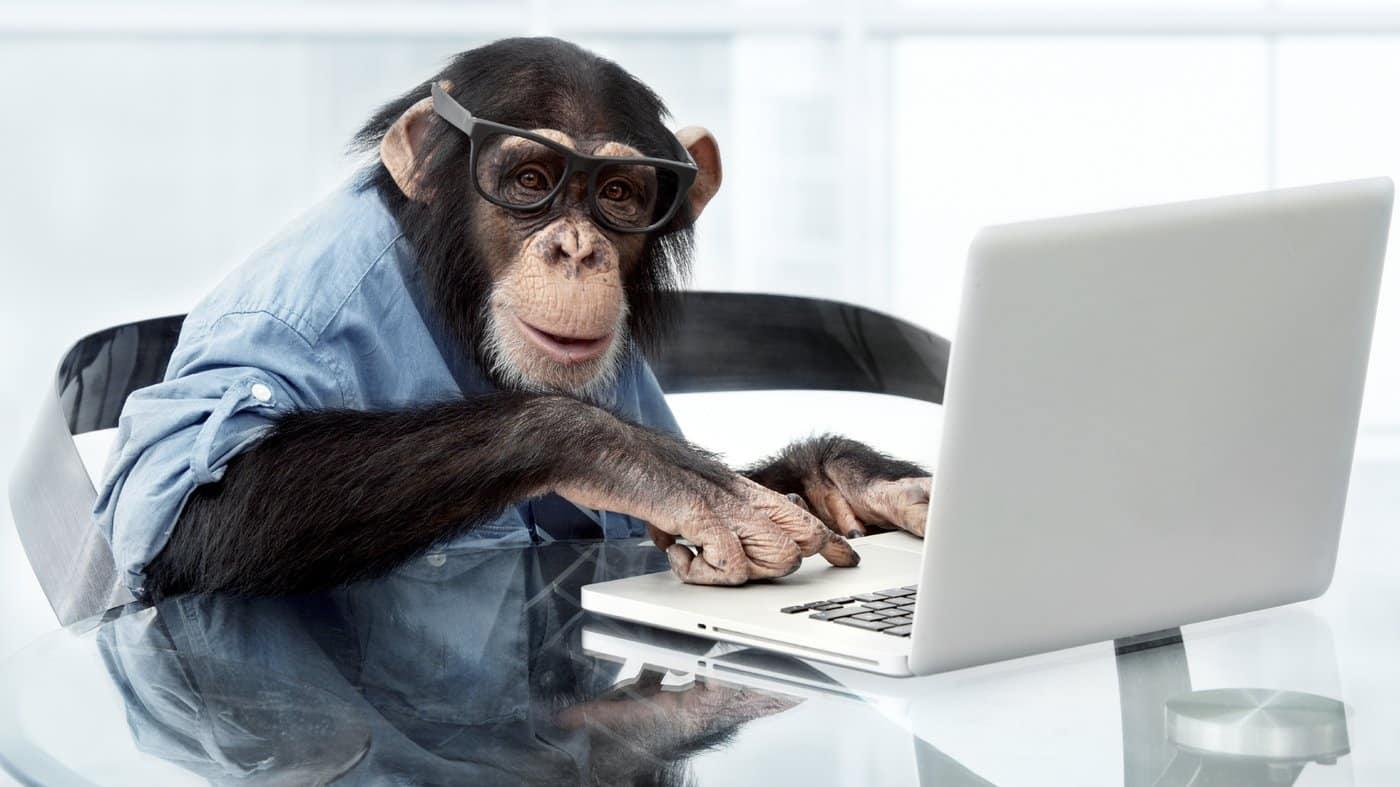 Macaco da Neuralink joga videogame com o cérebro, segundo Elon Musk