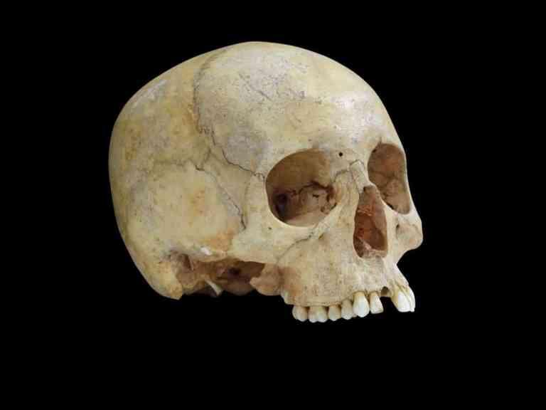 Como esse crânio acabou sozinho dentro de uma caverna na Itália?