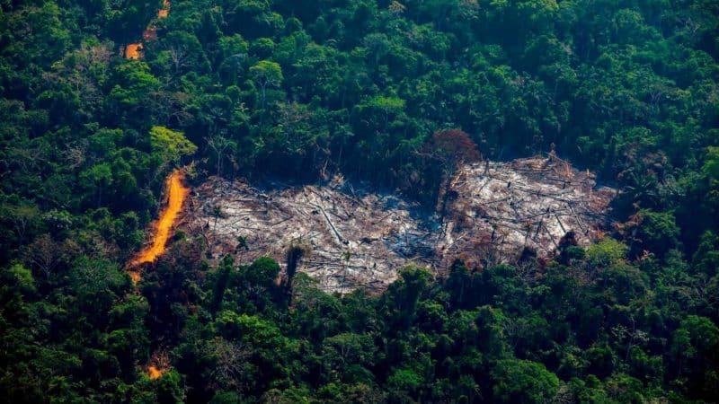 Amazonia1, Fatos Desconhecidos