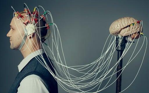 Cientistas desenvolvem pequenos cérebros para entender a evolução do órgão
