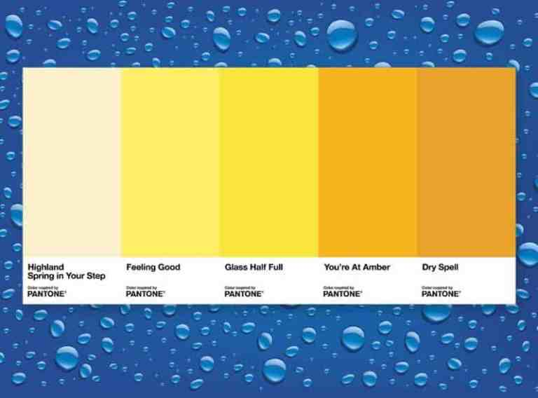 Pantone cria gráfico de cores do xixi. Veja se você está hidratado