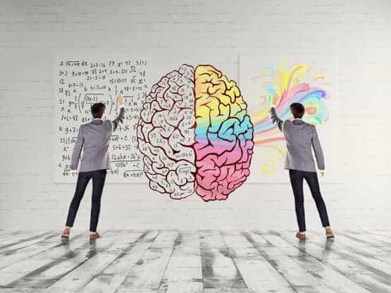 Qual lado do cérebro você usa mais?