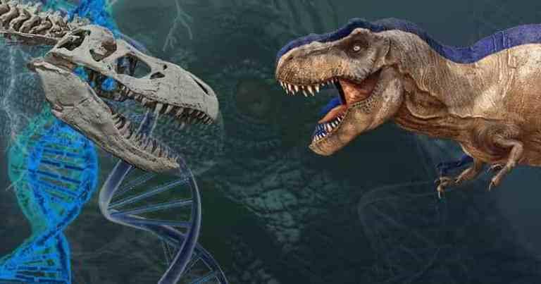 Traços de DNA ainda podem existir em ossos de dinossauros de 125 milhões de anos