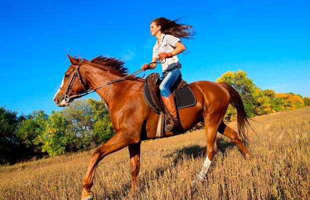 Andar a cavalo é mais perigoso do que esquiar e andar de moto. Entenda o motivo