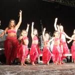 Festa da Nações de Nova Odessa 2017