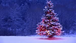 O Natal é uma festa - Conheça o significado dos símbolos fatos e eventos (5)