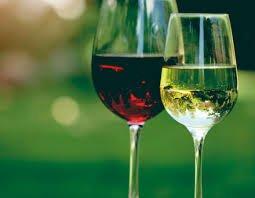 Benefícios do Vinho Para Saúde Comprovados Cientificamente fatos e eventos (7)