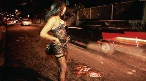 Prostituição Infantil. Um crime contra a criança fatos e eventos (11)