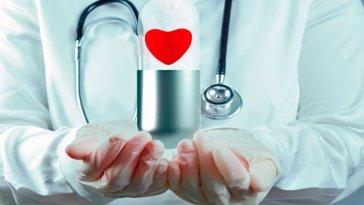 O que a ciencia fala sobre o amor fatos e eventos (6)
