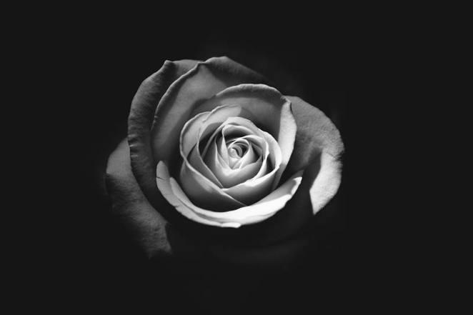 Reflexões sôbre a morte nova odessa fatos e eventos (9)