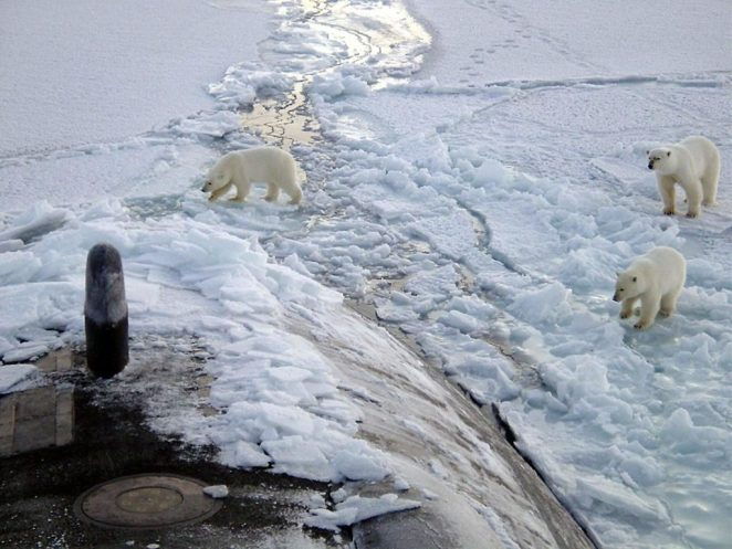 Polo norte nova odessa fatos e eventos (3)