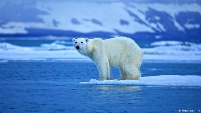 Polo norte nova odessa fatos e eventos (10)