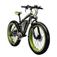 RICH BIT TP012 Electric Fat Bike Mountain Bicycle Snow Bike Cruiser Ebike 1000 Watt Motor 48V 17Ah Lithium-ion Battery 20''4.0 inch Fat Tire Suspension Fork Green