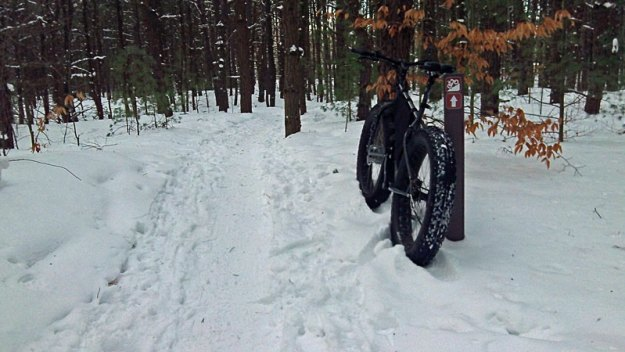 riley-trails-fat-bike-marke