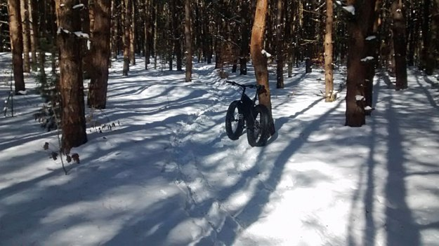 riley-trails-pines-fat-bike