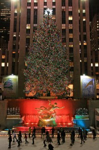 DEC 14 rock ctr tree