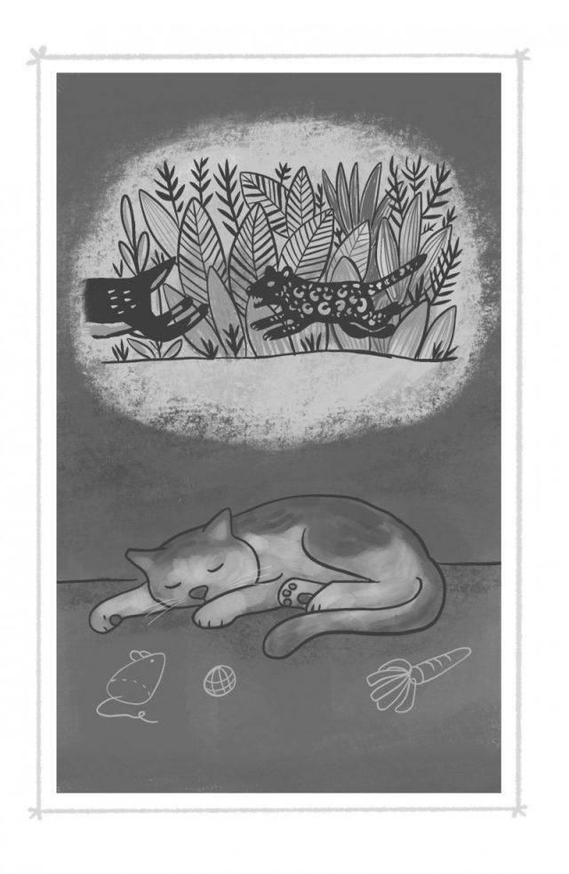 Gabriel the cat dreams of being a jaguar