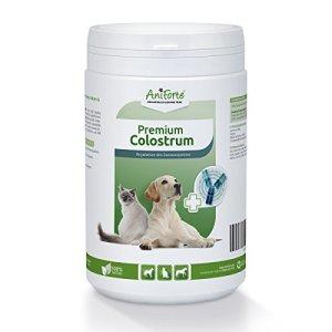 AniForte Colostrum 500 g pour Chiens, Chats et Chevaux, Poudre de Premier Lait Naturel