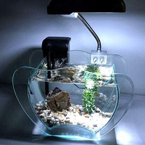 Generic MP, Pompe à Roche, Filtre, el, Lampe LED, Aquarium de rocaille Kit Complet Aquarium c Gravier, LED ump, F Grenat avec Lampe complète, Rock