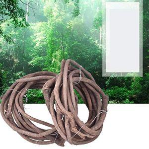 MElnN Reptile Arboréal Vigne Jungle Flexible Branche Souple Habitat Décoration de Mariage Terrarium Vivarium Accessoires Branche Free Size Voir Image