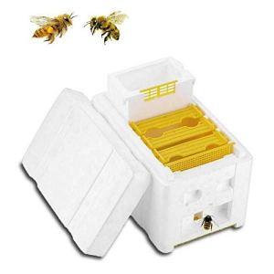 wenzeshiye Élevage de la Reine de l'Apiculture, récolte de Ruche d'Abeille King Box Boîte de pollinisation DIY Outils pour la pollinisation de Jardin – Outils d'Apiculture DIY