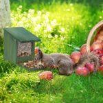 Relaxdays 10026312_746 Mangeoire pour écureuils, Distributeur Nourriture, à Installer, Bois, HLP: 17,5 x 12 x 25 cm, Marron foncé, Plastique, Brun , Brun foncé