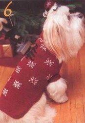 Knit Dog Coat