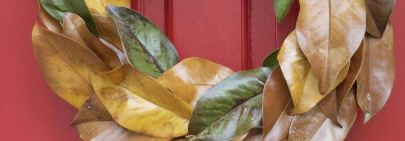 Inspiration for Fall Paint Colors