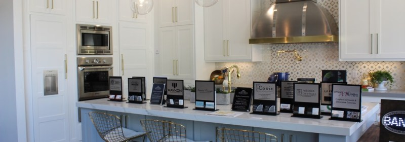 Parade of Homes Paint Color Scheme and Tour