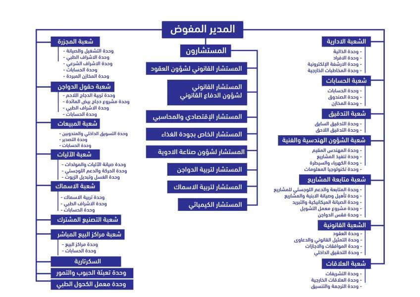 الهيكل التنظيمي للشركة
