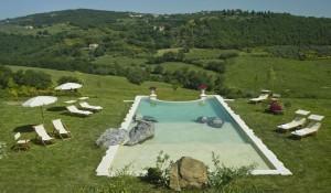 Qual piscina construir - de concreto