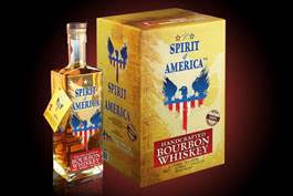 Spirit of America case