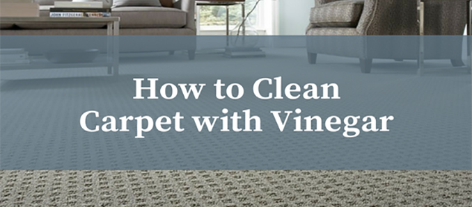 How To Clean Your Carpet With Vinegar Food Beverage Magazine