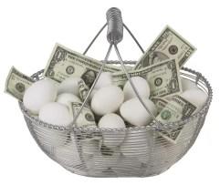 egg basket_opt