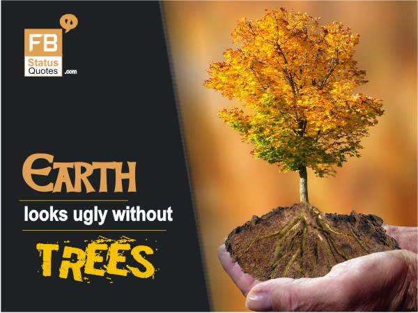 Save Trees Slogans pictures hindi