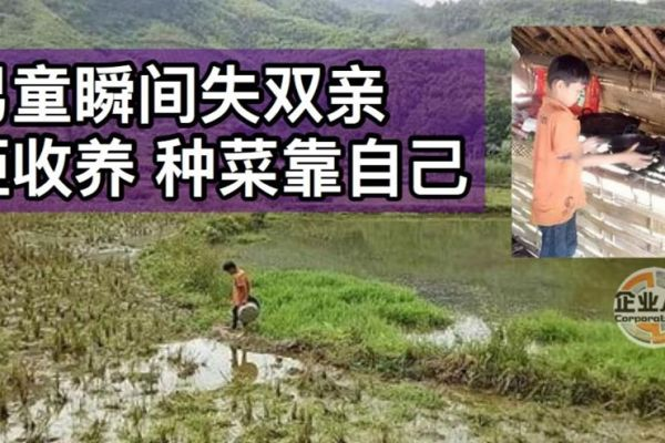 【企业人生】他独立,他勇敢,他坚强!越南一名10岁男童邓文劝(Dang Van Khuyen),自幼没了妈妈。