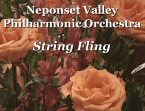 NVPO String Fling Concert