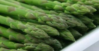 The Taste of Asparagus