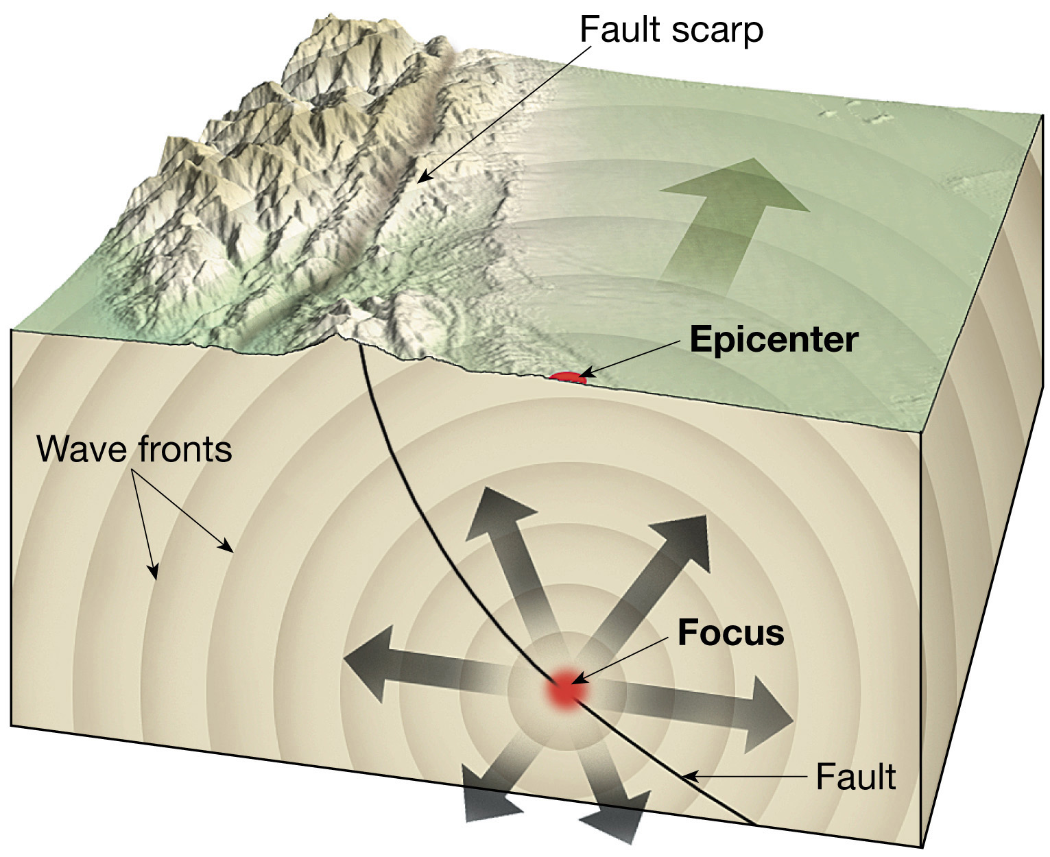 Earthquakes And Earth S Interior