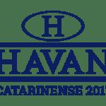 THUMB-HAVAN-300x250px-1-1