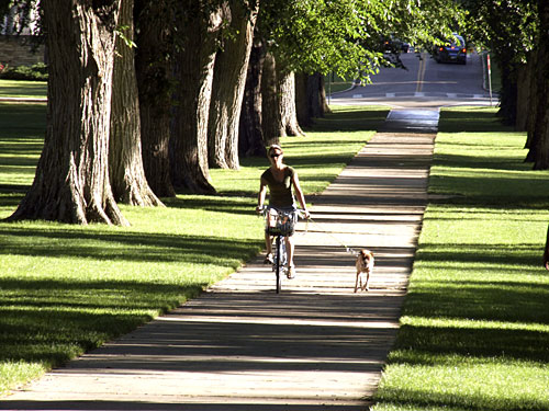 Exploring Old Town Fort Collins by bicycle - City of Fort Collins photo