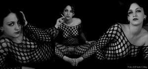frank-c-mey-erotikfotografie-die-schoenheit-der-vagine-tryptichon