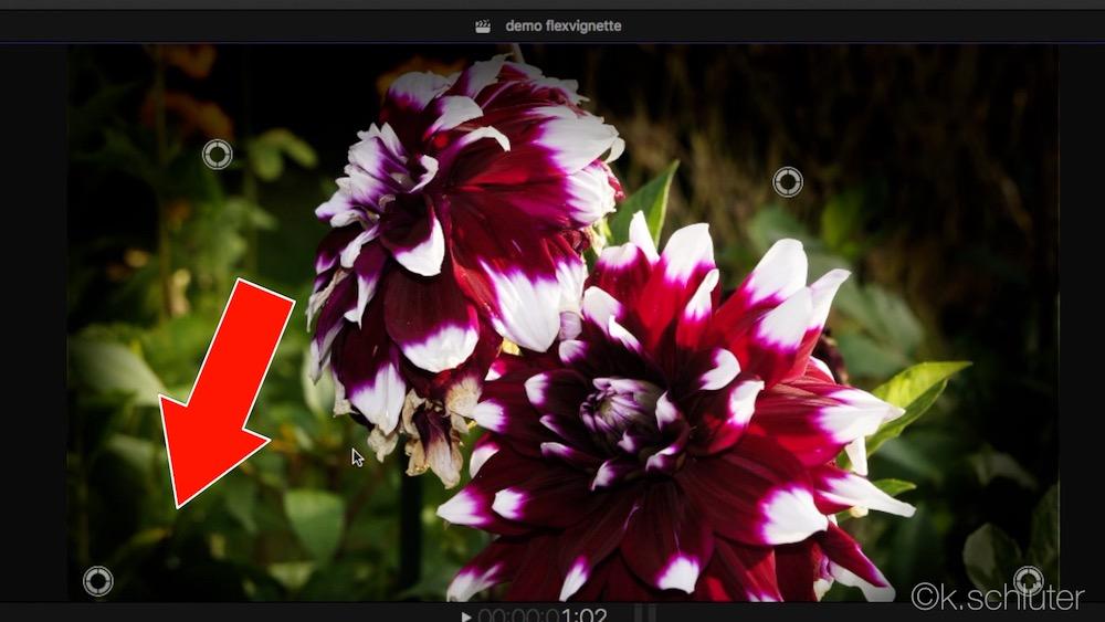 Image result for VLEXIGNETTE