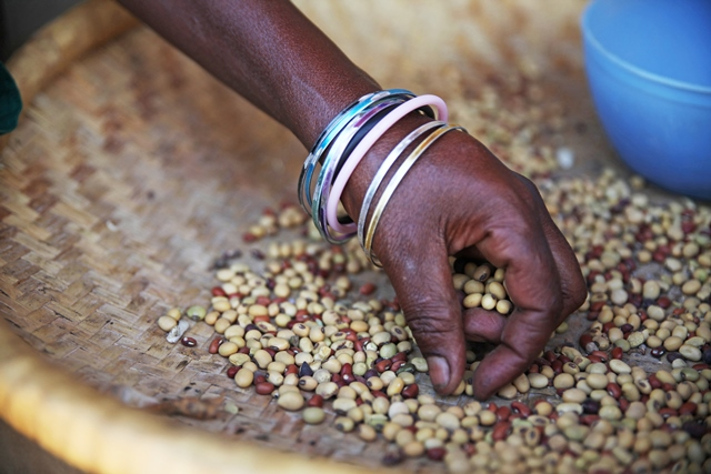 Research reveals food security undermined by competition law
