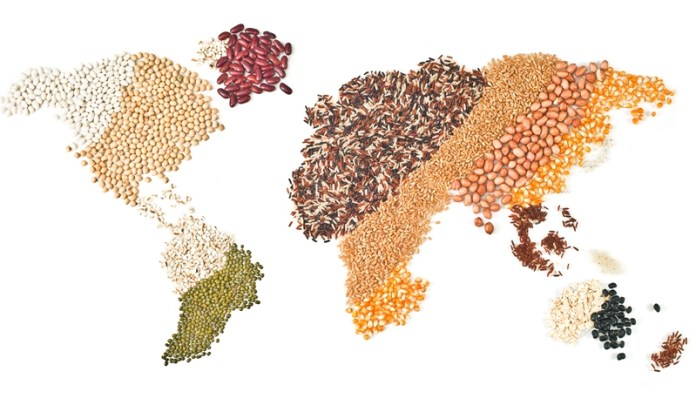 Blueprint for Brexit ponders fate of UK pulses