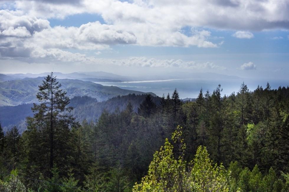 Trail to East Peak- Mt Tamalpais State Park-   feastingathome.com