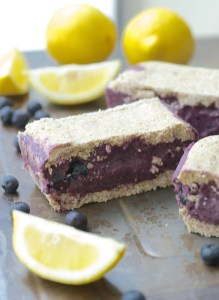 Lemon Blueberry Ice Cream Bars